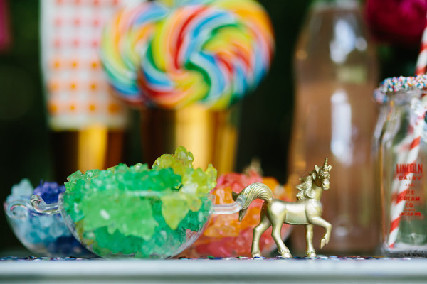 Rodeo and Co Photography - Unicorns (2)