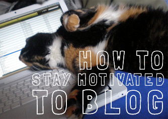 This cat is SO OVER blogging. By: Jacob Enos – CC BY 2.0